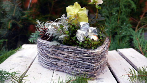 Blumendeko Weihnachten Blumenwelt Berlin Rahnsdorf