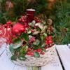 Pflanzschale Weihnachten