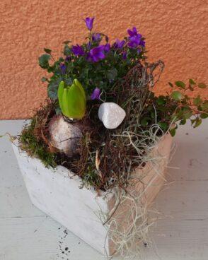 Frühlingsblüher im quadratischen Steingefäß
