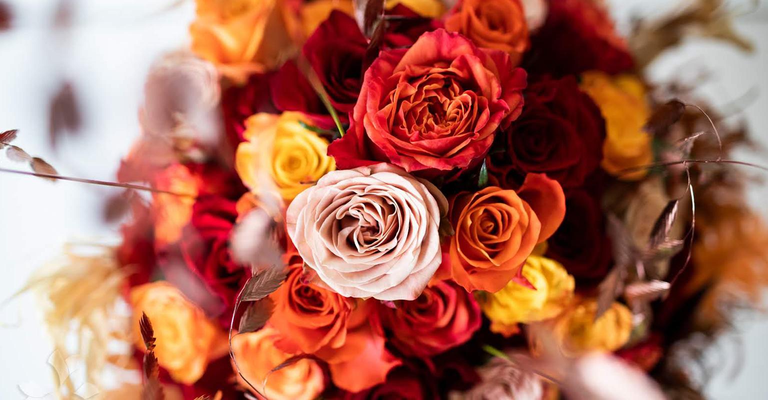 Rahnsdorfer Blumenwelt Rosen